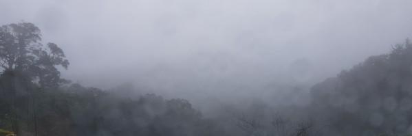 kop de mist in